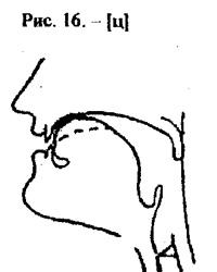 Артикуляционные уклады, буква Ц
