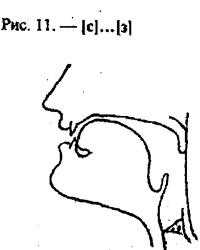 Артикуляционные уклады, буква С, З