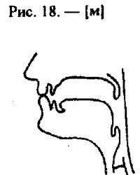 Артикуляционные уклады, буква М