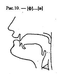 Артикуляционные уклады, буква Ф, В